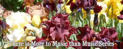 There is More to Music than Music Series
